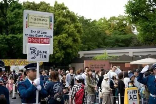 再留几天行么?日本舍不得大熊猫回中国