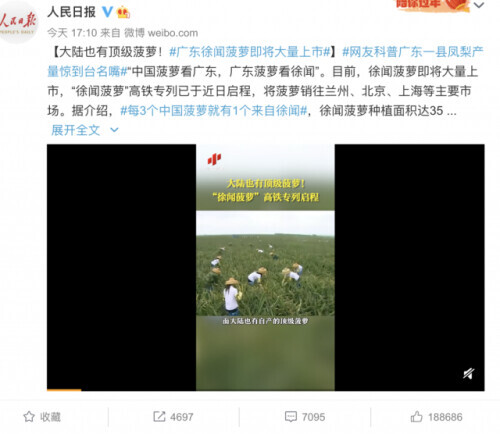 """大陆离不开台湾凤梨?网友科普:来看菠萝的海! 中国青年报 2021-03-03 09:31 3月2日,  人民日报科普徐闻菠萝,  没想到在微博上""""大火""""!  图片  每3个中国菠萝就有1个  来自徐"""